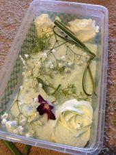 pengawetan bunga