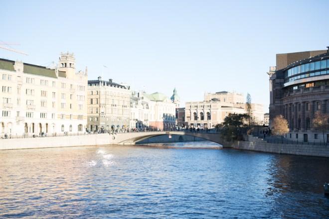 kusin_i_stockholm-40