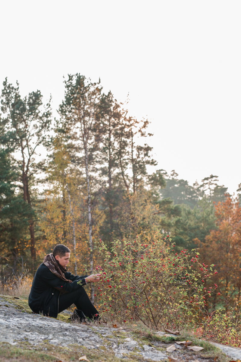 stockholm_rosehip_autumn-19