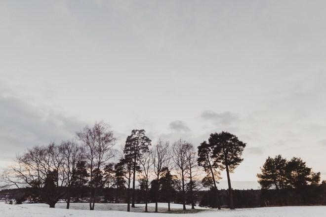 edsviken_golfbana_stockholmgk_antligenvilse-2