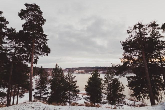 edsviken_golfbana_stockholmgk_antligenvilse-4
