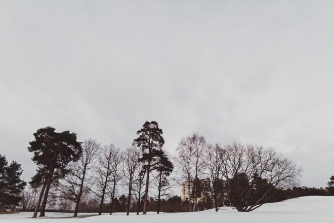 edsviken_golfbana_stockholmgk_antligenvilse-5