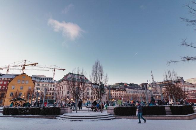 kungstradgarden_stockholm_antligenvilse-3
