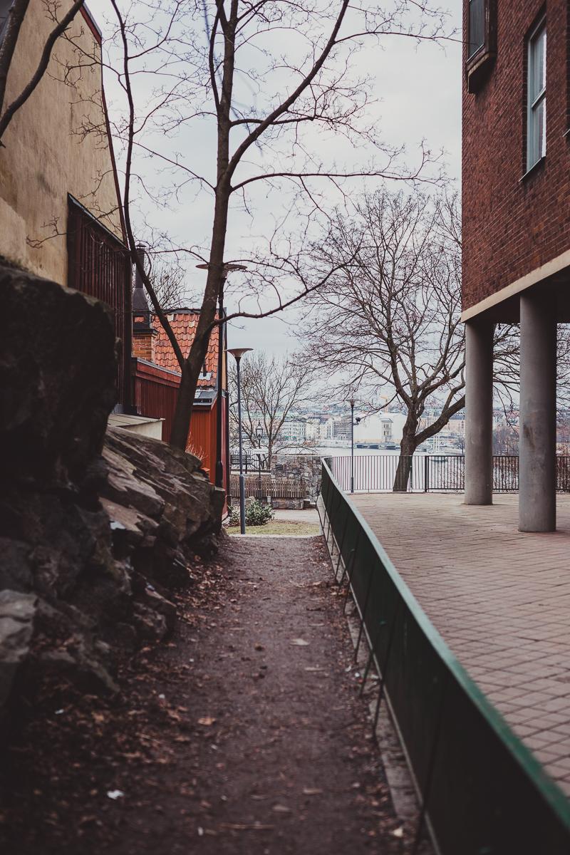stockholm_antligenvilse-32