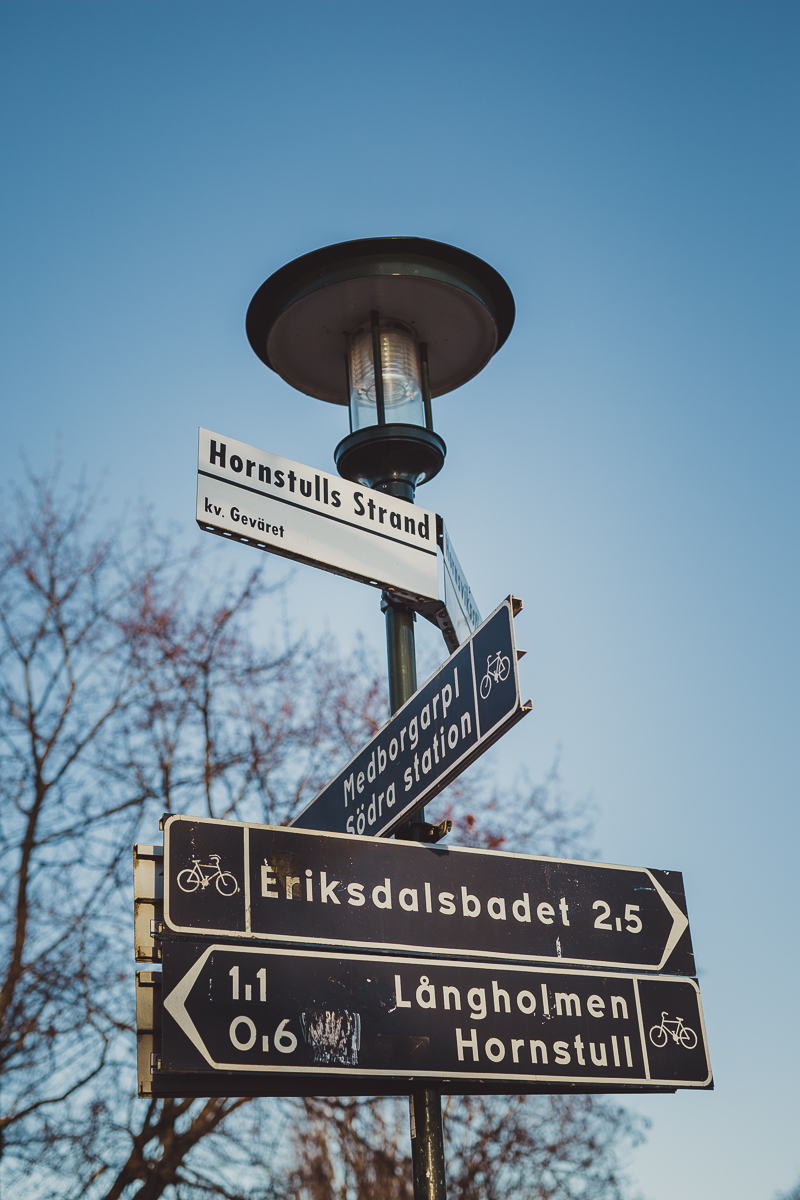 stockholm_antligenvilse-34