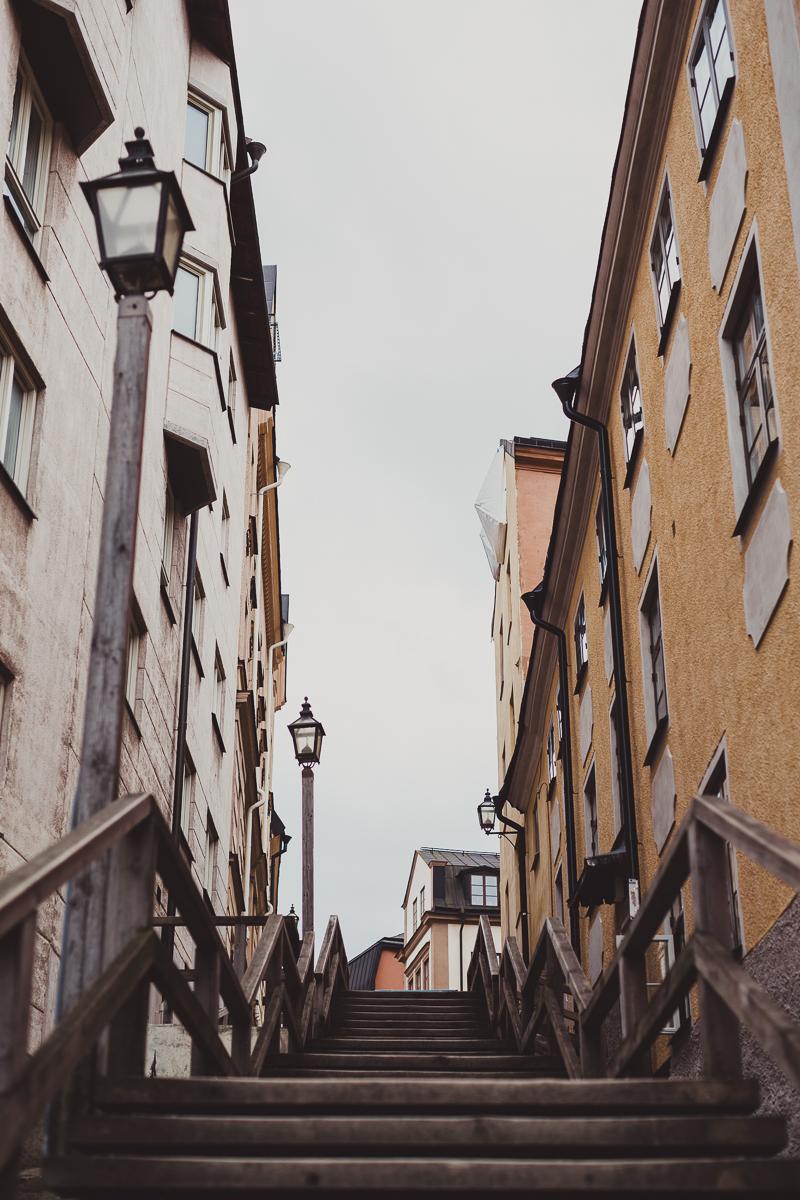 stockholm_antligenvilse-43