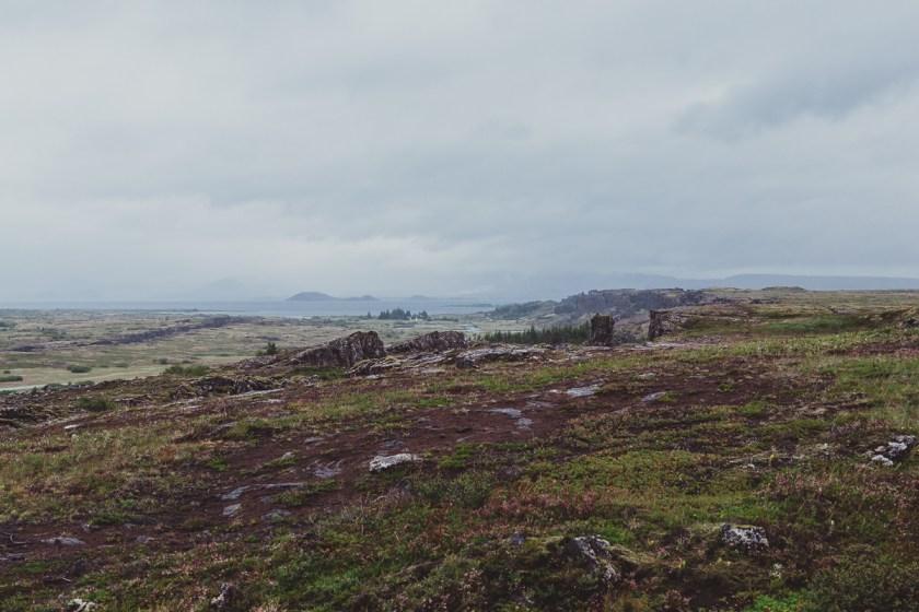 stockholm_antligenvilse_islands_vidder-19
