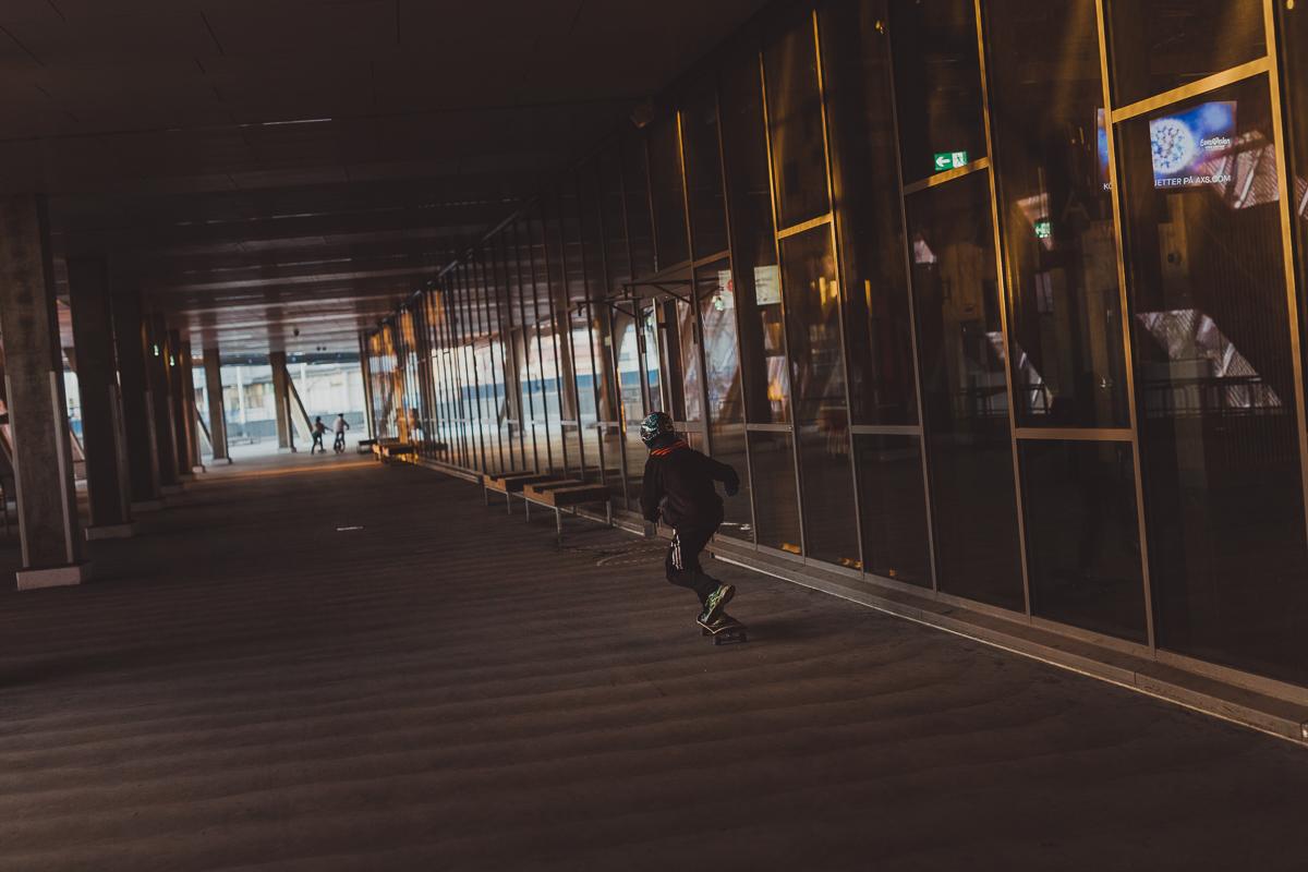 stockholm_antligenvilse_skate-19