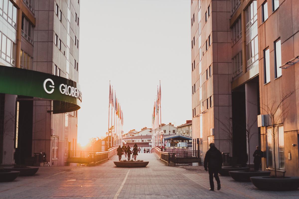 stockholm_antligenvilse_skate-31