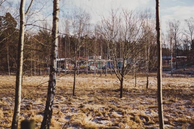 stockholm_antligenvilse_snosatragrand-2