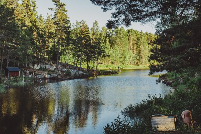 svenska_parlor_antligenvilse-7