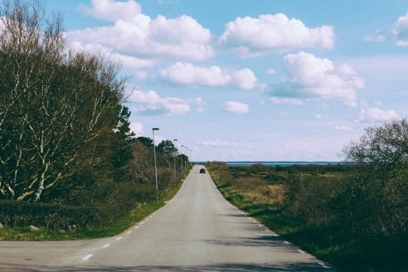 antligenvilse_vejbystrand-2