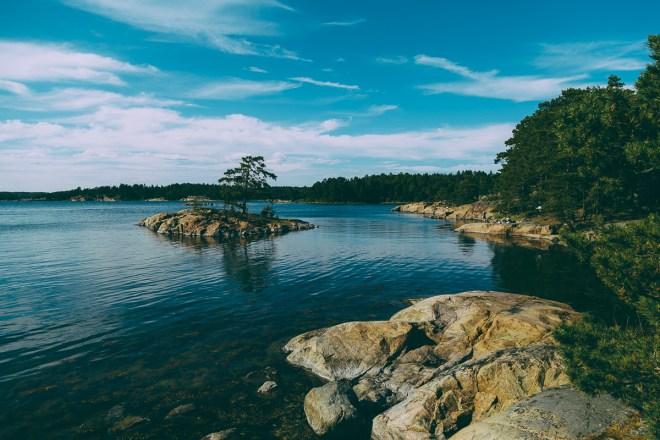 stendorren_naturreservat-25