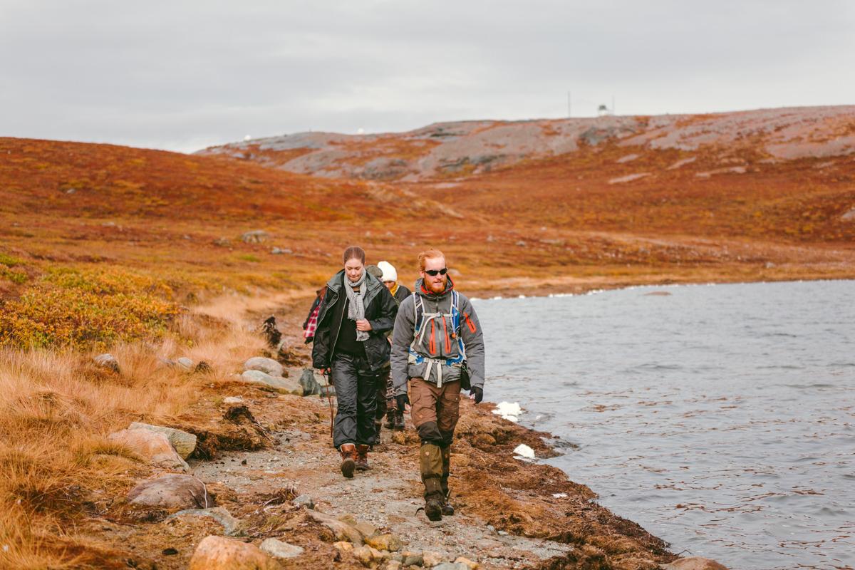 arktisk_oken_gronland-29