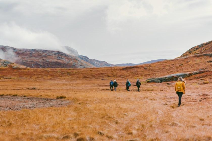 arktisk_oken_gronland-37