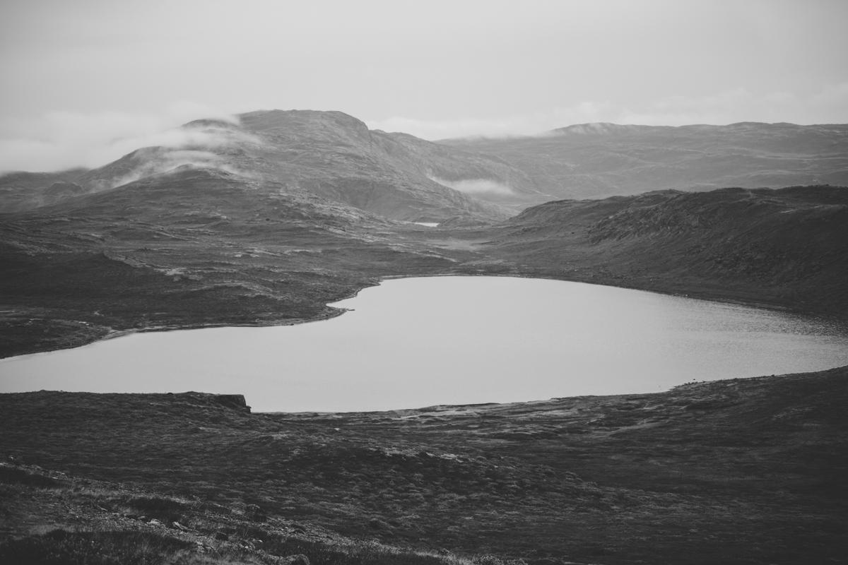 arktisk_oken_gronland-5