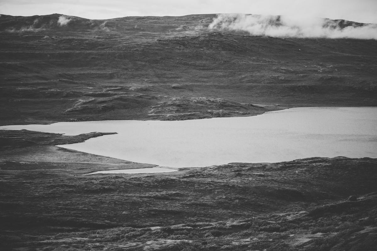 arktisk_oken_gronland-51