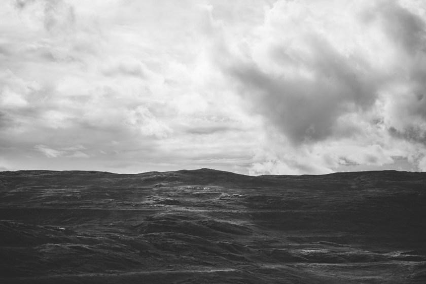 arktisk_oken_gronland-82
