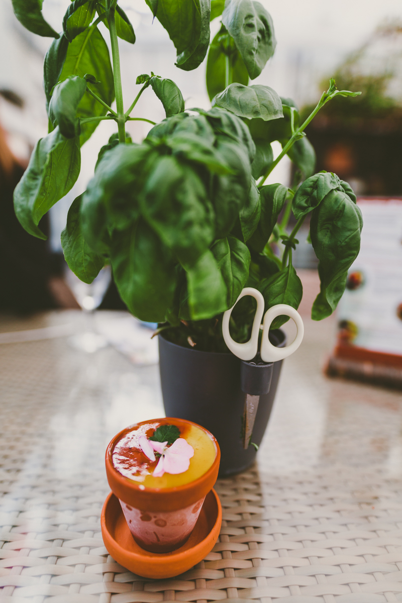 Freidheimar Tomatoes