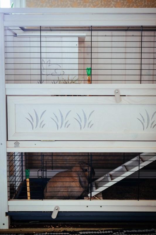 kaninbur tvåvåning