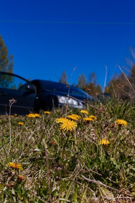 roadtrip i norra uppland