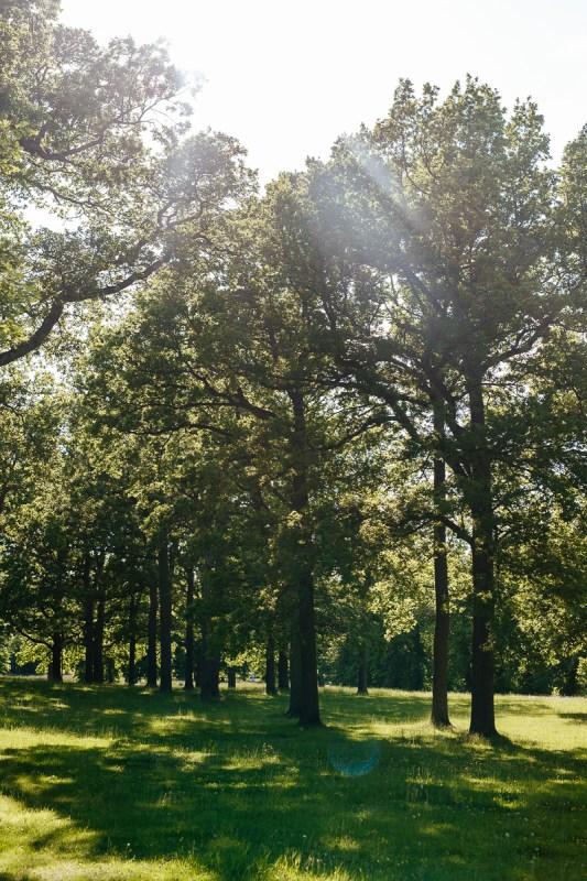 slottsparken drottningholm