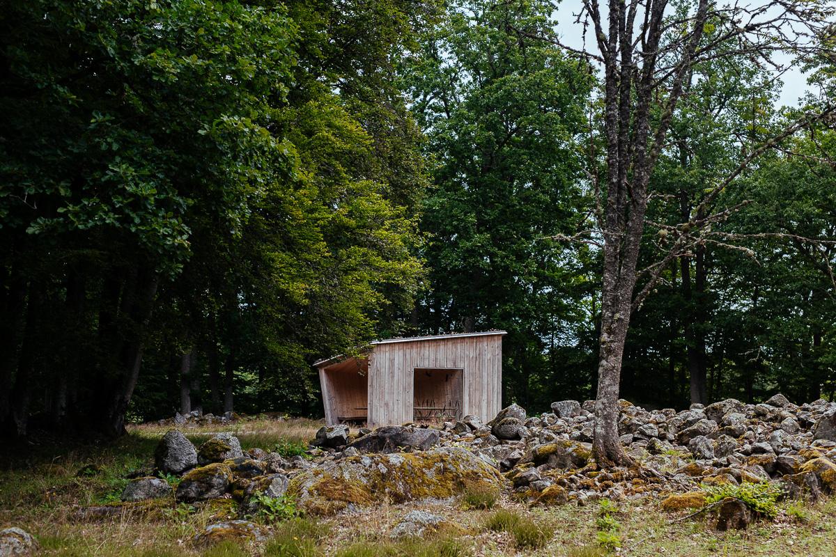 vindskydd vid Åsnen nationalpark