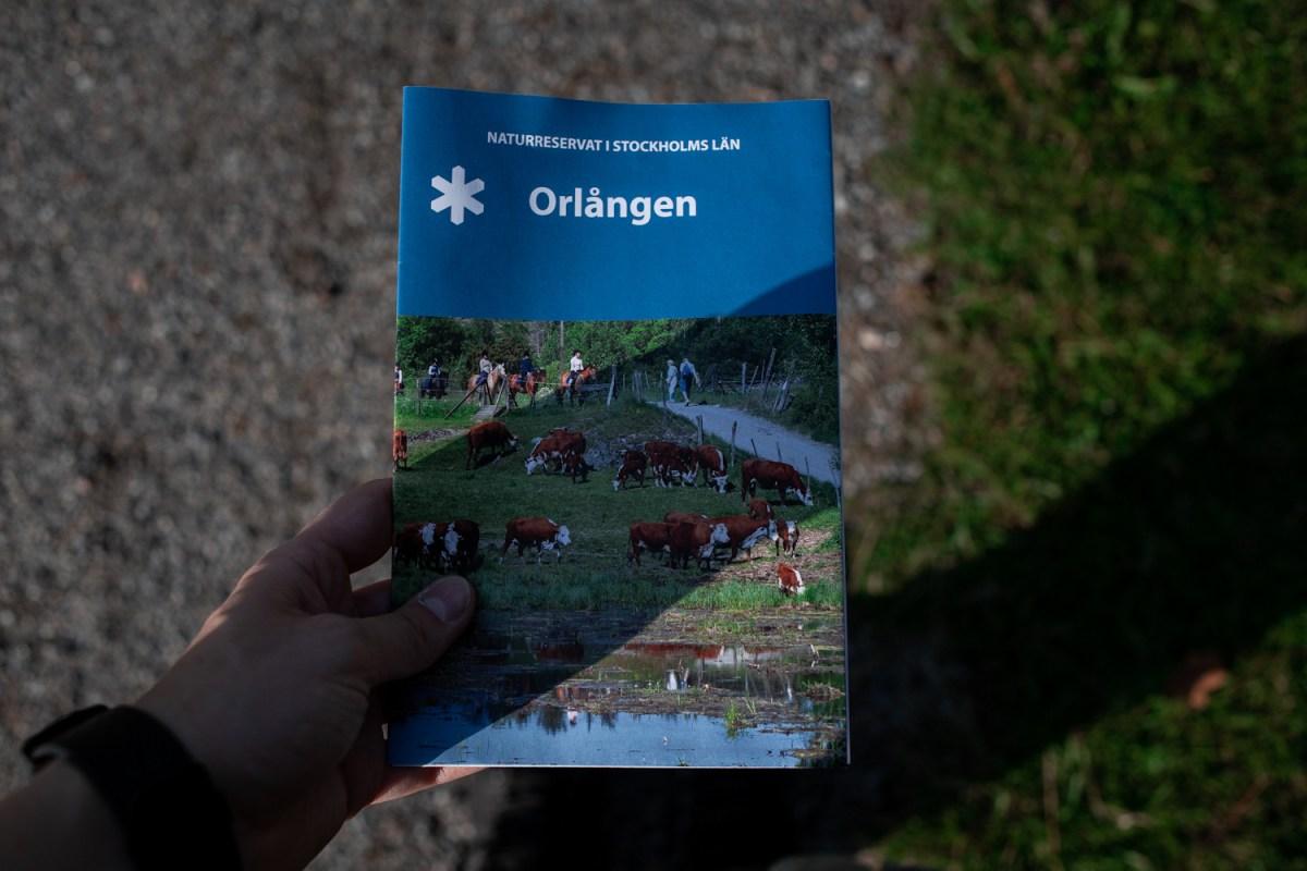 orlången stockholm