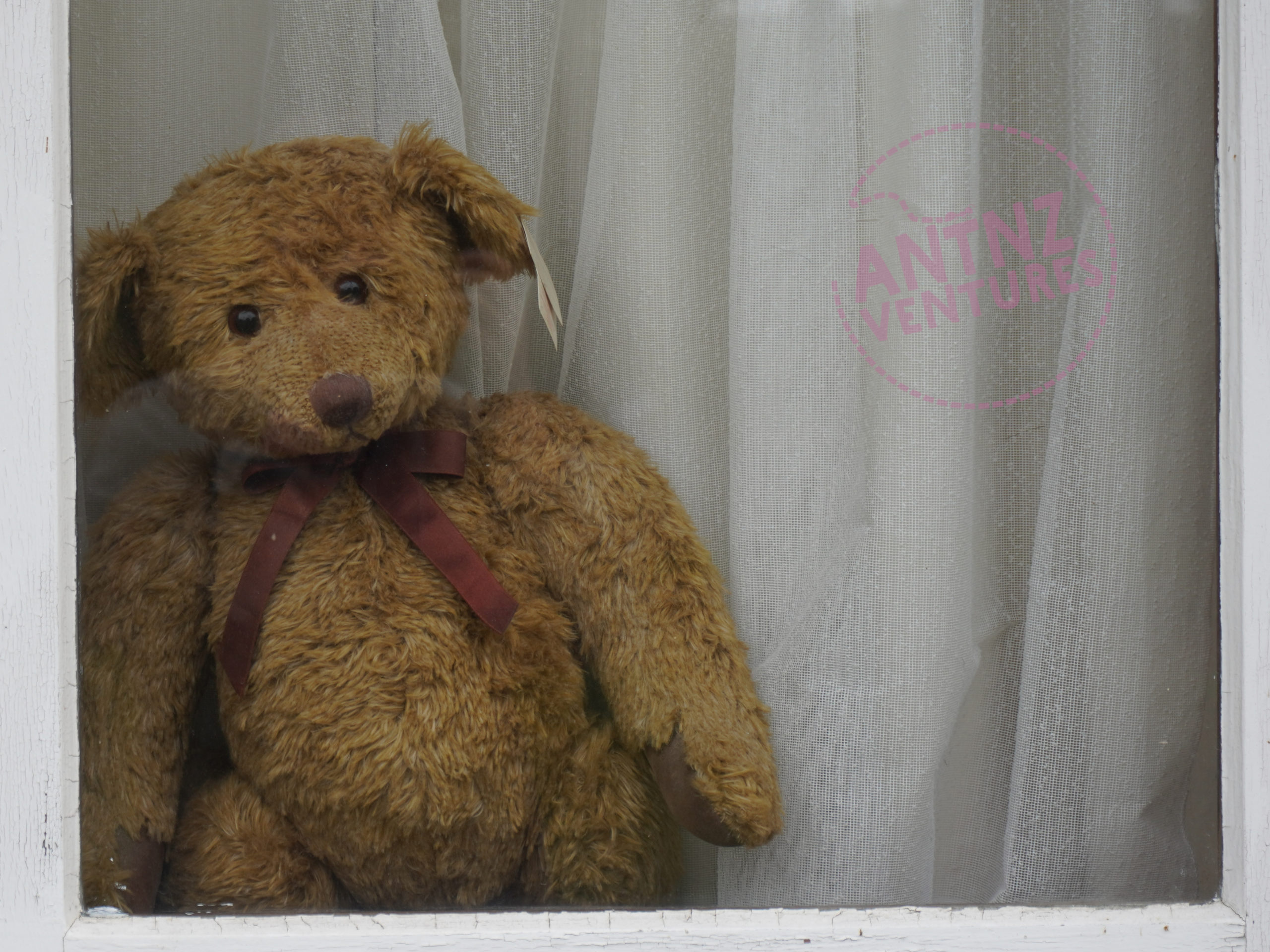A brown teddy bear with dark brown ribbon. This is more traditional styled teddy bear.