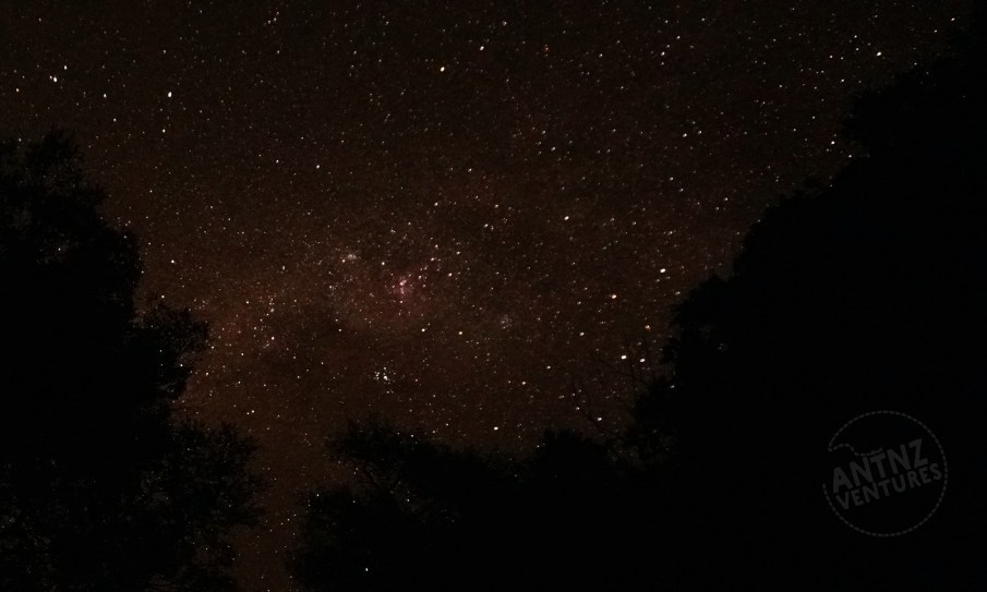 A night picture of the milky way. with a slight red tinge. In the lower part of both sides the silhouettes of trees can be seen.