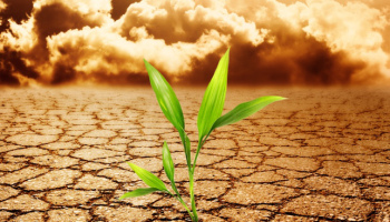 crecimiento postraumático