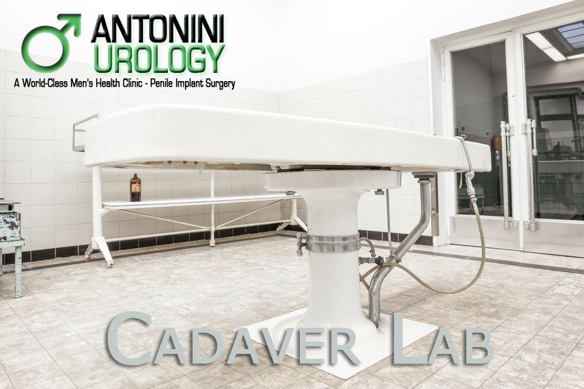 Cadaver Lab – Training on Penile Prosthesis Implant