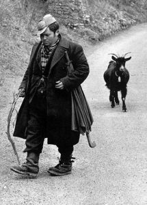 pastore ciociaro