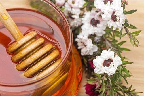 il miele di manuka