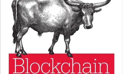 Reading up on the blockchain