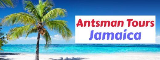 Antsman Tours Jamaica