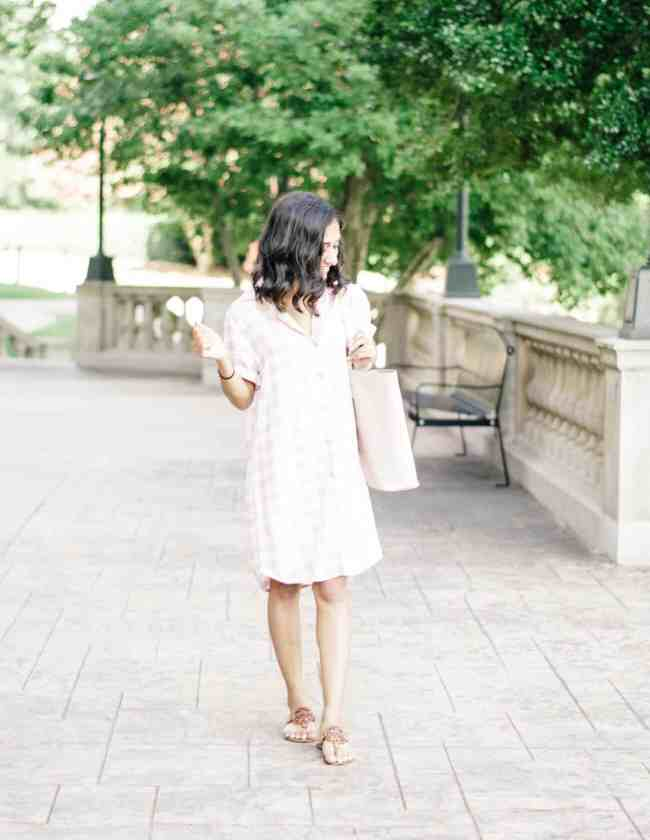 Blush Gingham Dress