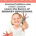 Video Lesson: What is Sensory Processing