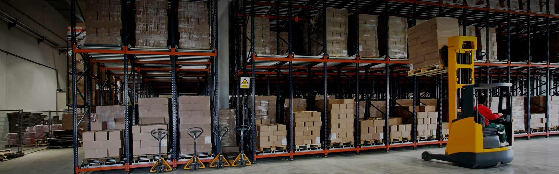 warehouse simulation software