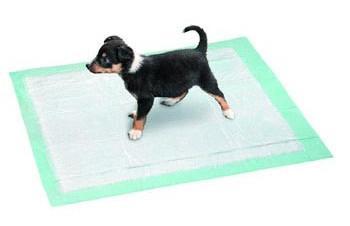 tapis de proprete pour chien comment