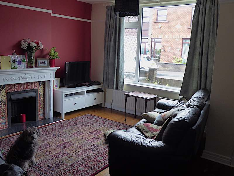 fireplace, red wall living room and dog