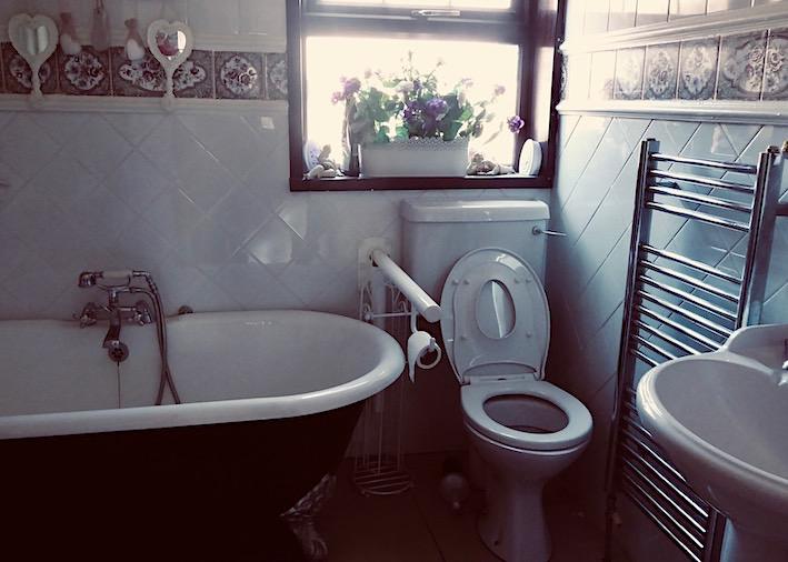 bathroom with disability rail