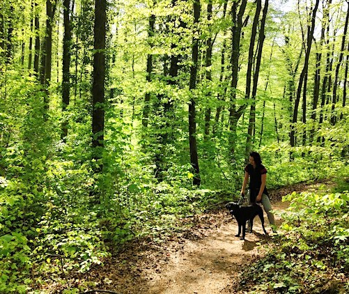 girl in woods with black dog