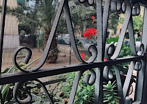 window bars looking onto garden and geranium