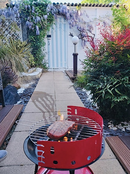 BBQ in garden with shed
