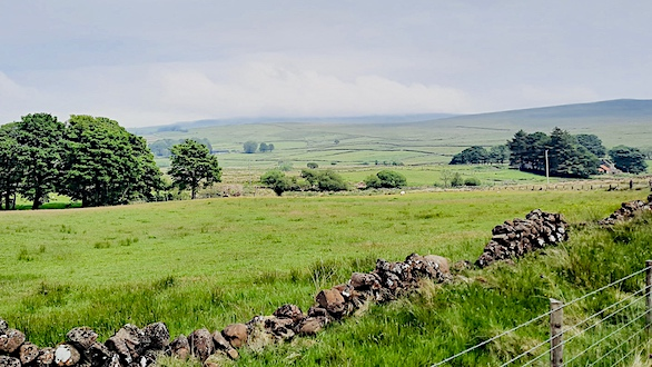 fields and stone wall
