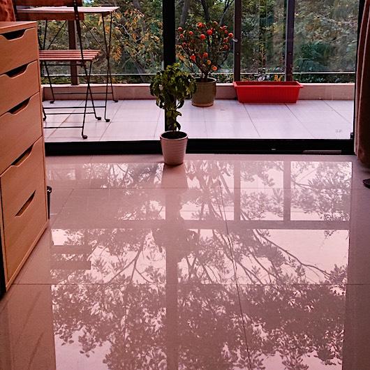 reflections of trees through balcony,