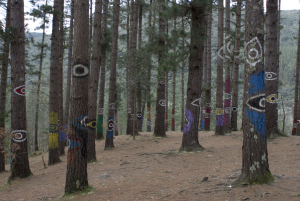 Painted Forest of Oma