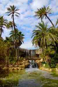 Alicante Palmeral