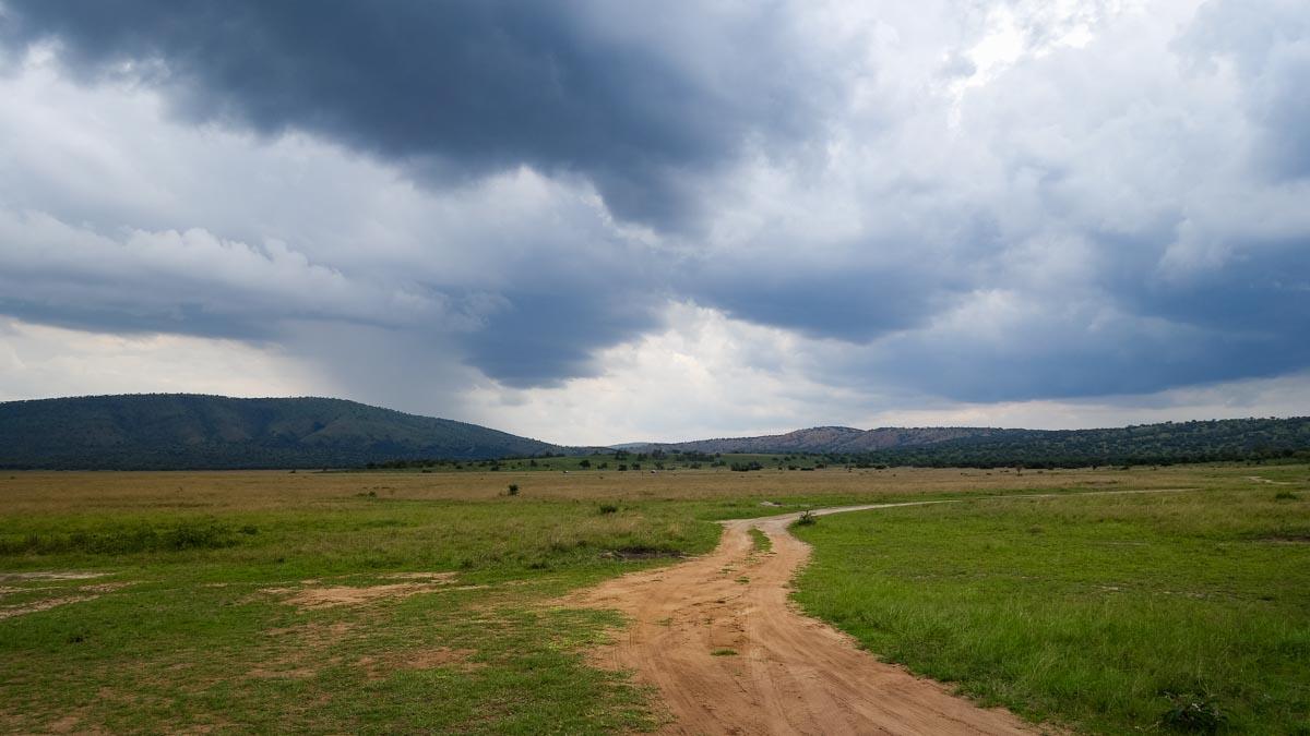 National park rescued in Rwanda